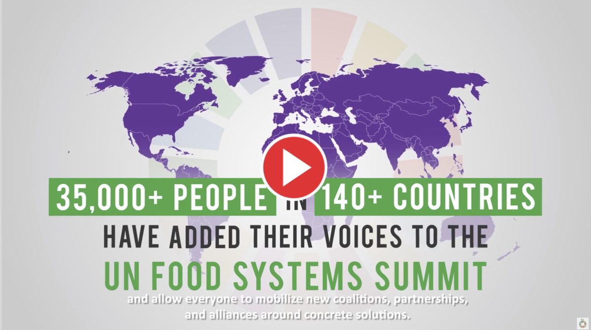 Video:The road to Rome and the UN Food Systems Summit
