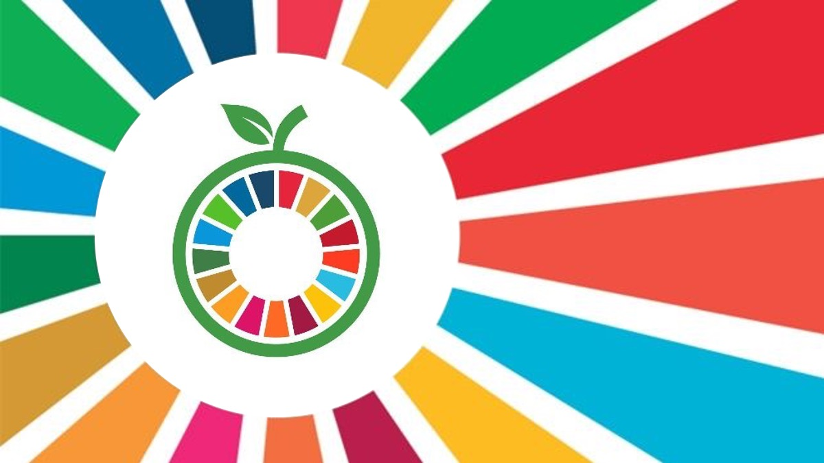 UN SG Call for Ambition